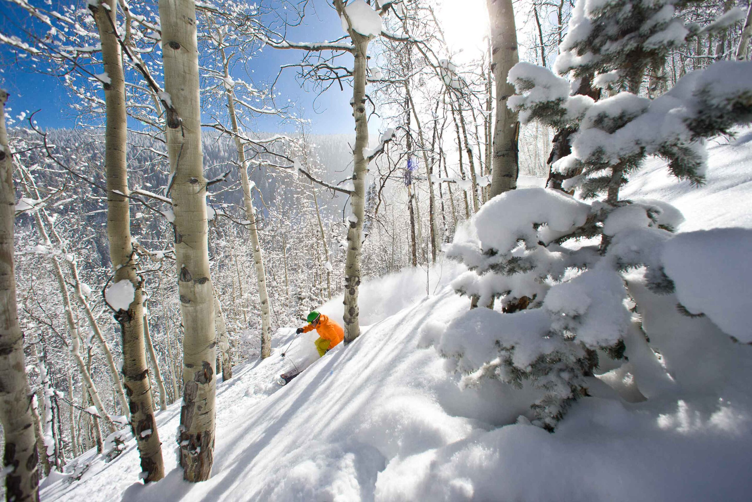 Beaver Creek Powder Skier